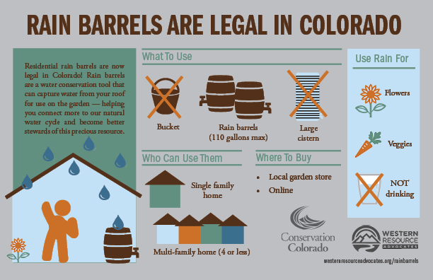 rain barrel infographic small