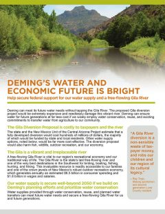 Gila River Deming