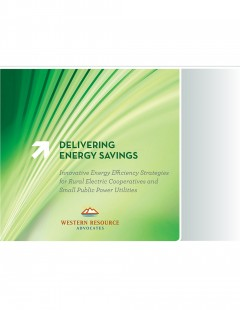 delivering energy savings report