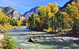 menu-size-co_mtn-river-foliage-season_ss175544276